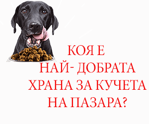 Суха храна за кучета